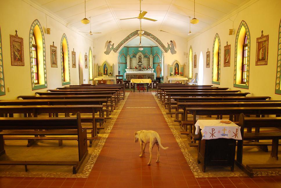 Beagle Bay Church - Il ny a pas un chien... ou presque